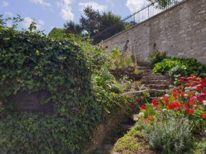 My-Montmartre-Tours-coin-insolite-et-fleurs